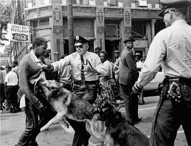 Walter Gadsden, an onlooker, is attacked by a police dog in this iconic photograph by Bill Hudson of the Associated Press