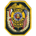 Irondale Police patch.jpg