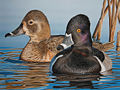 2012 Alabama Waterfowl stamp.jpg